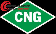diesel dual fuel CNG